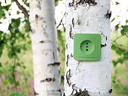collage: birch trunk with green power point. © kav777/fotolia.com