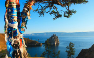 Sacred tree adorned with colourful ribbons, Lake Baikal