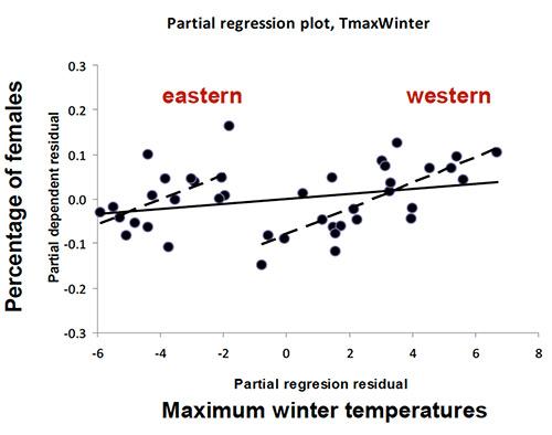Fig. 5 Relationship between sex-ratio and temperature