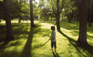 Boy standing enchanted among trees in the evening sun. © Jerome Berquez/Fotolia