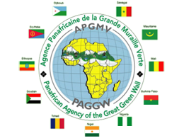 Logo der Pan-African Agency of the Great Green Wall