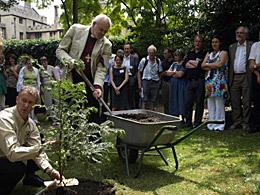 Bishop of London planting a yew tree. © Bankside Press