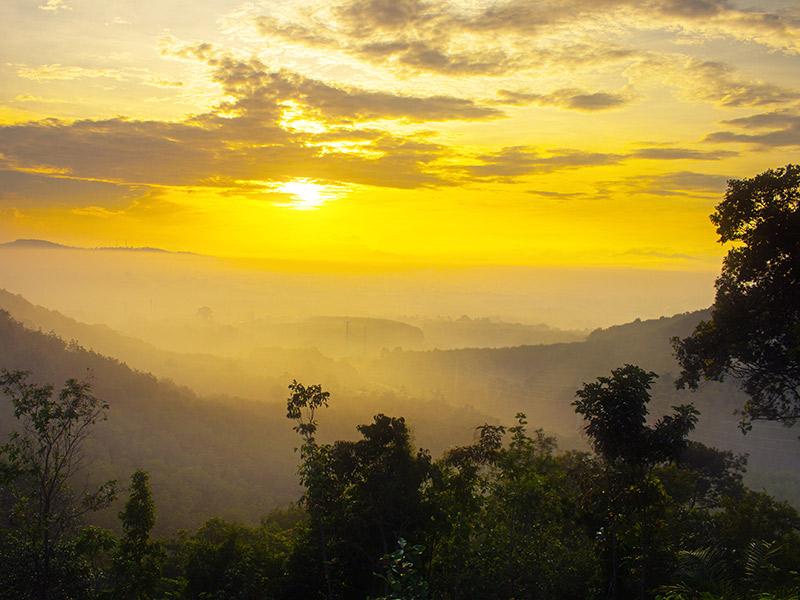 forest evaporation in Thailand. © Abdulroheem Lungleengo/shutterstock.com