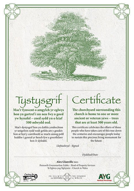 yew tree certificate by the Church in Wales (2015)